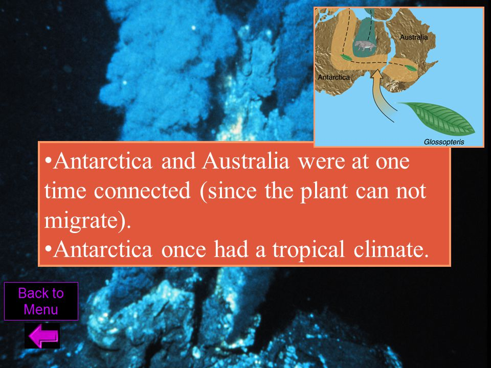 Antarctica once had a tropical climate.