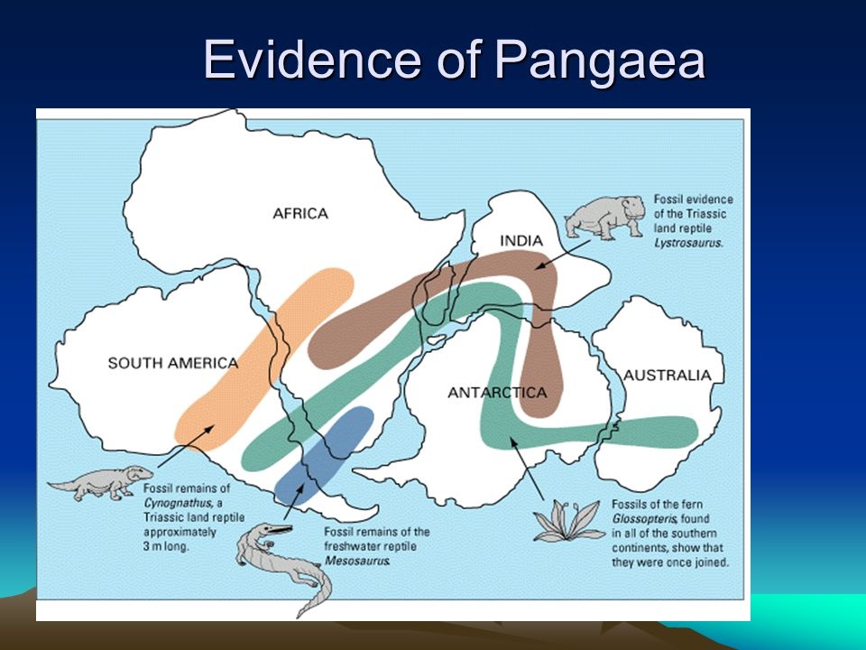 Evidence of Pangaea