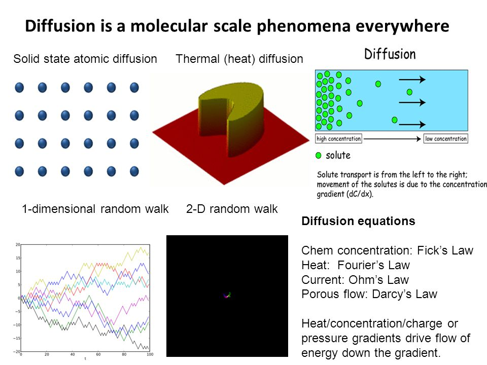 Diffusion is a molecular scale phenomena everywhere