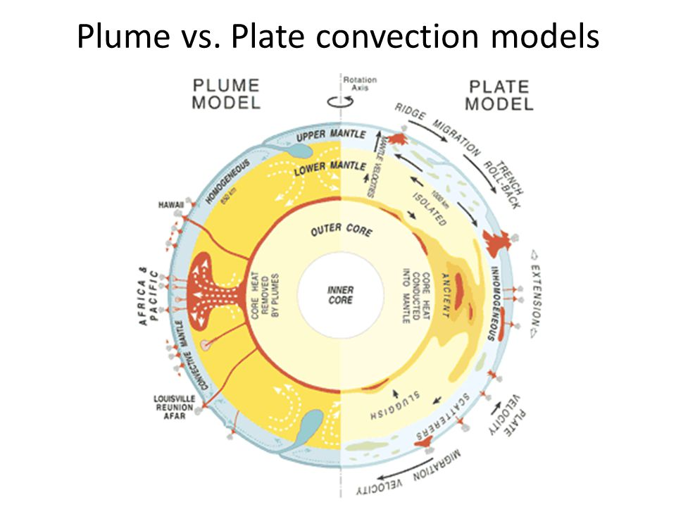 Plume vs. Plate convection models