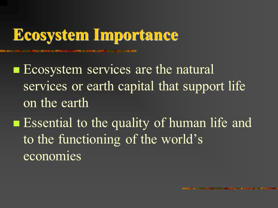 Ecosystem Importance Ecosystem services are the natural services or earth capital that support life on the earth.