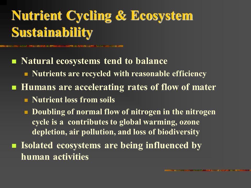 Nutrient Cycling & Ecosystem Sustainability