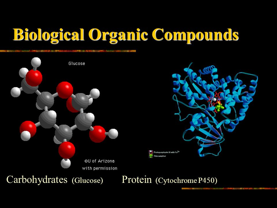 Biological Organic Compounds