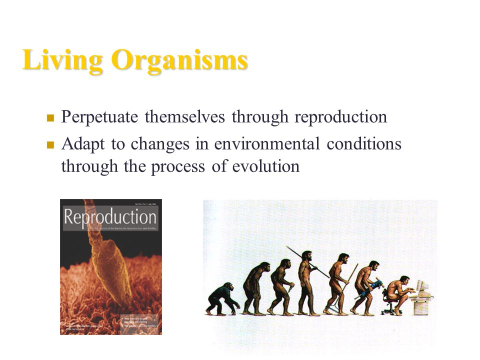Living Organisms Perpetuate themselves through reproduction