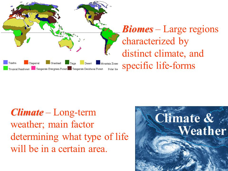 Biomes – Large regions characterized by distinct climate, and specific life-forms