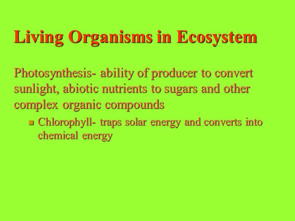 Living Organisms in Ecosystem