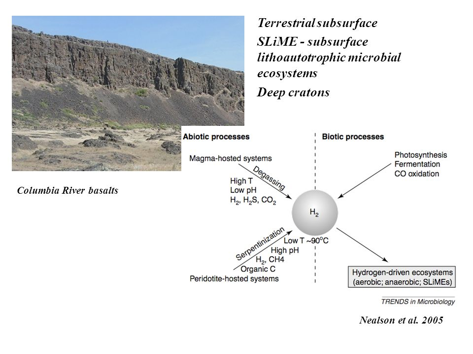 Terrestrial subsurface