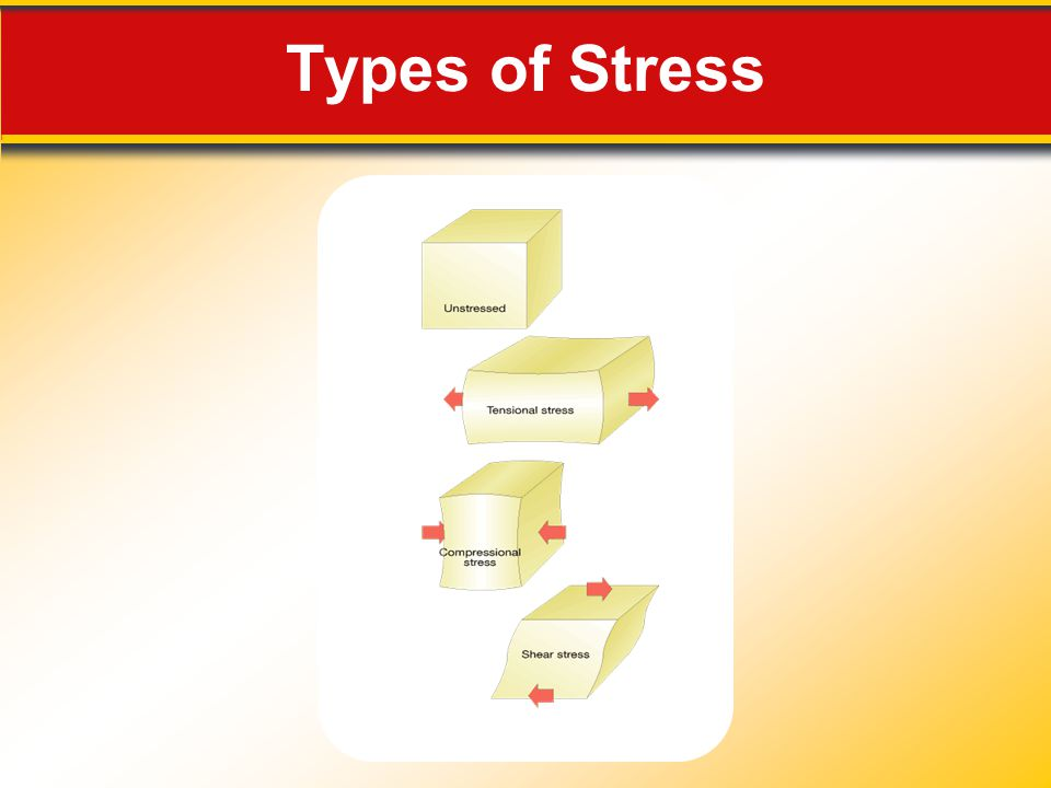 Types of Stress Makes no sense without caption in book