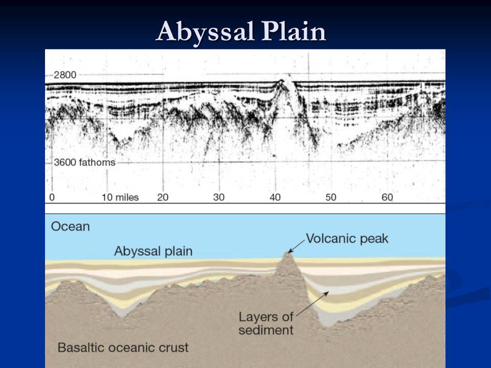 Abyssal Plain