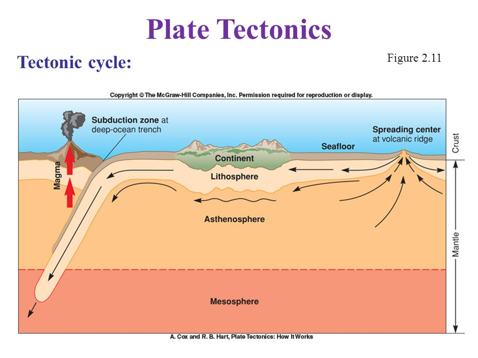 Plate Tectonics Tectonic cycle: Figure 2.11