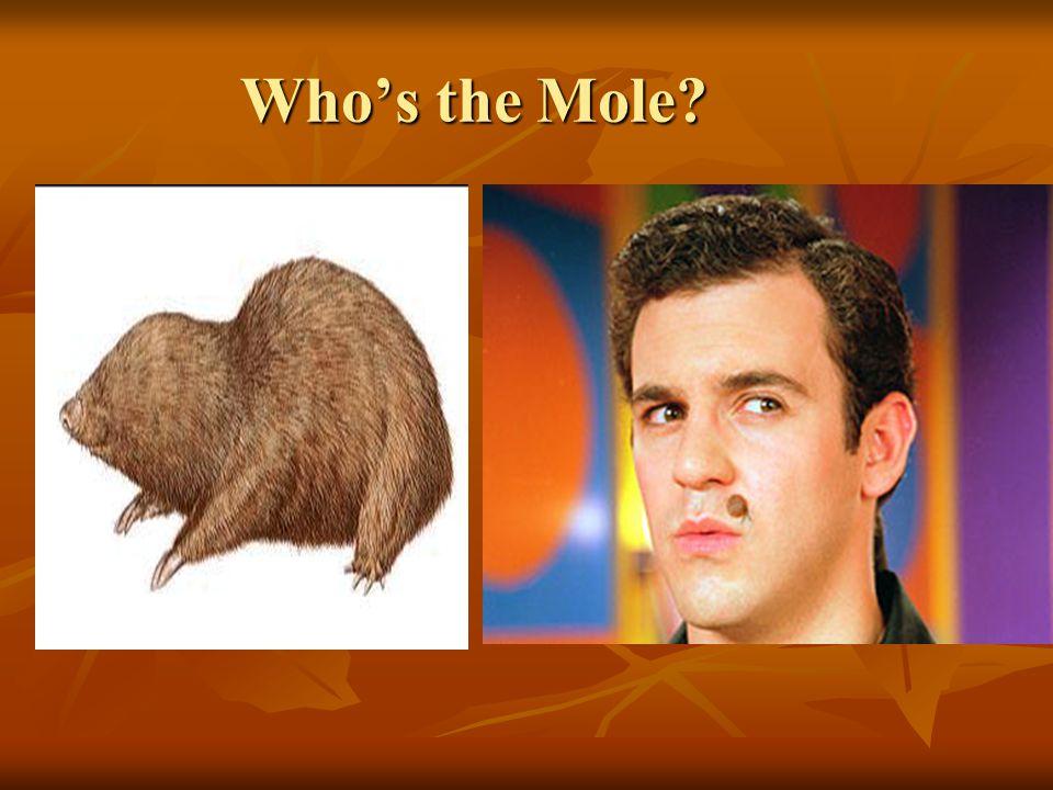 Who's the Mole