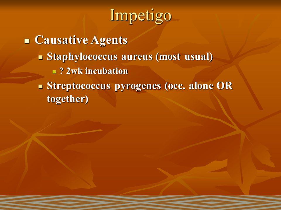 Impetigo Causative Agents Staphylococcus aureus (most usual)