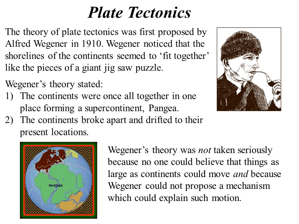 Plate Tectonics The theory of plate tectonics was first proposed by