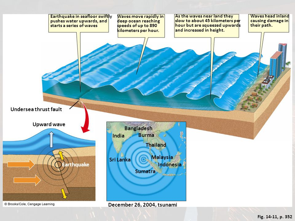 Undersea thrust fault Upward wave Bangladesh India Burma Thailand