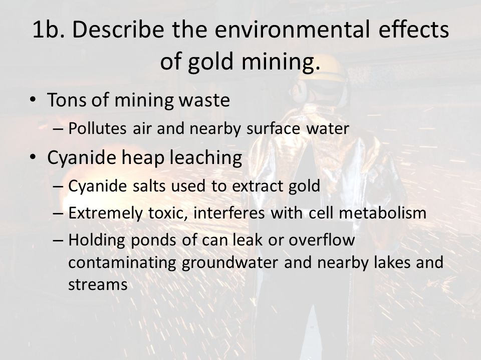 1b. Describe the environmental effects of gold mining.