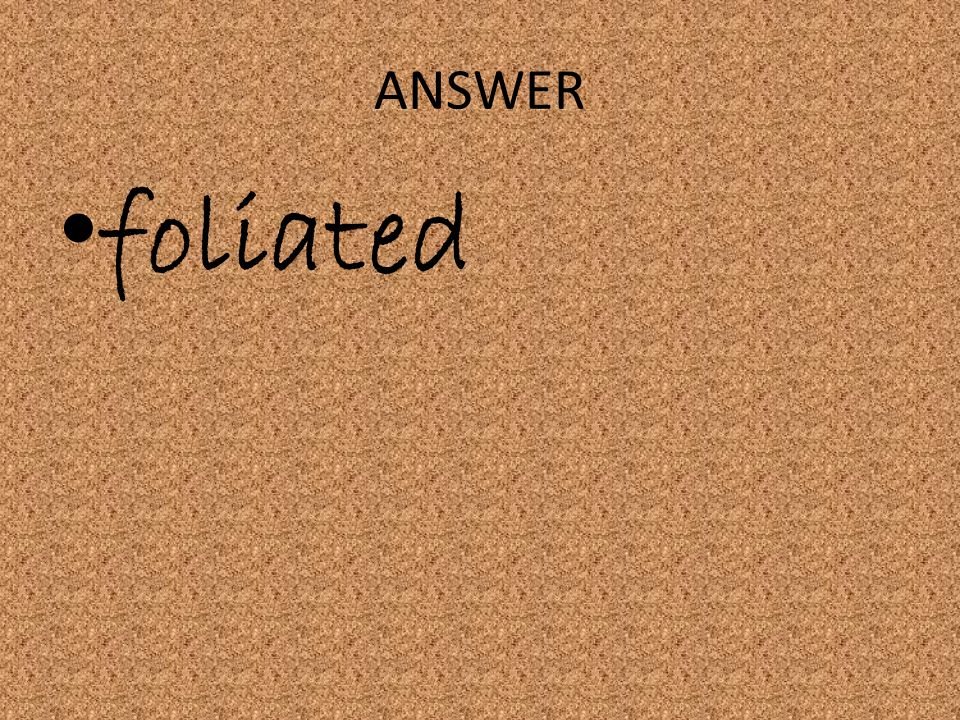 ANSWER foliated