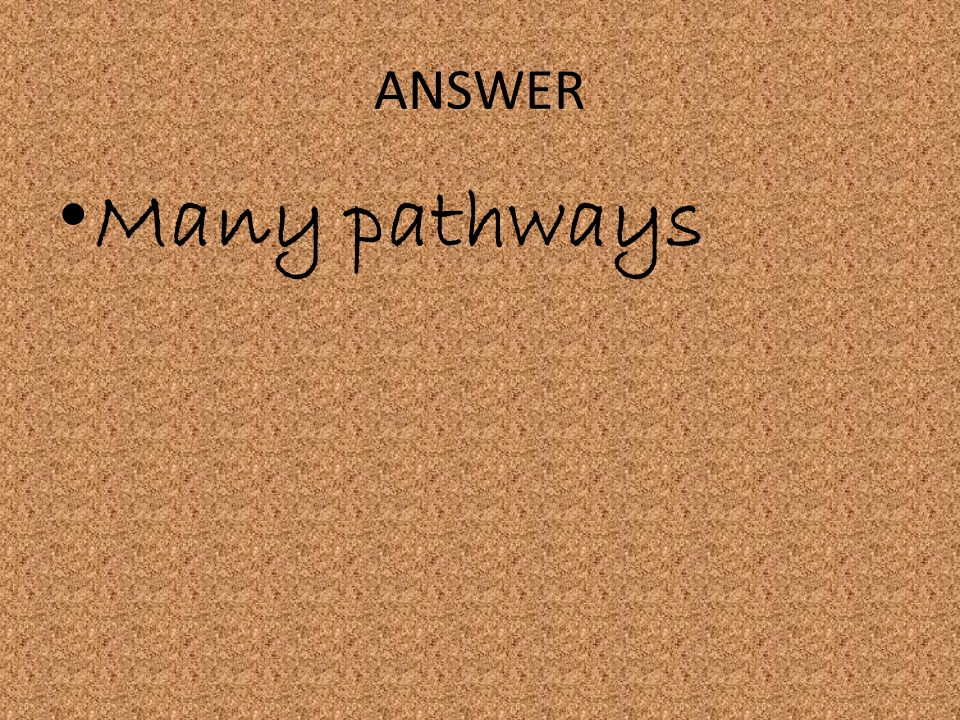 ANSWER Many pathways