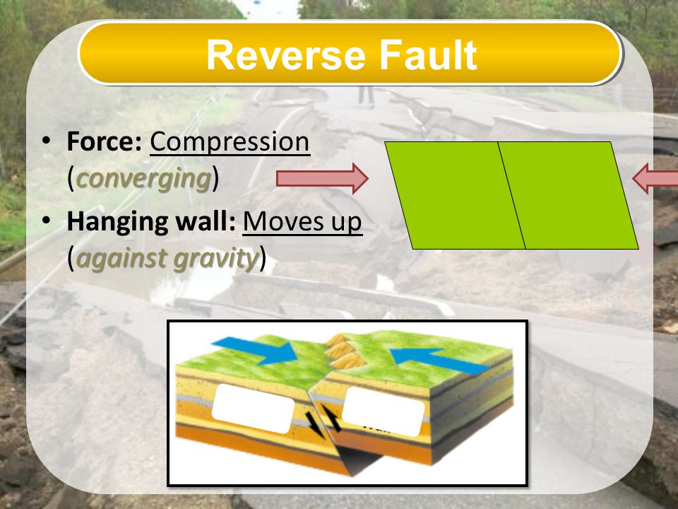 Reverse Fault Force: Compression (converging)