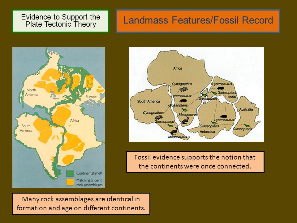 Landmass Features/Fossil Record