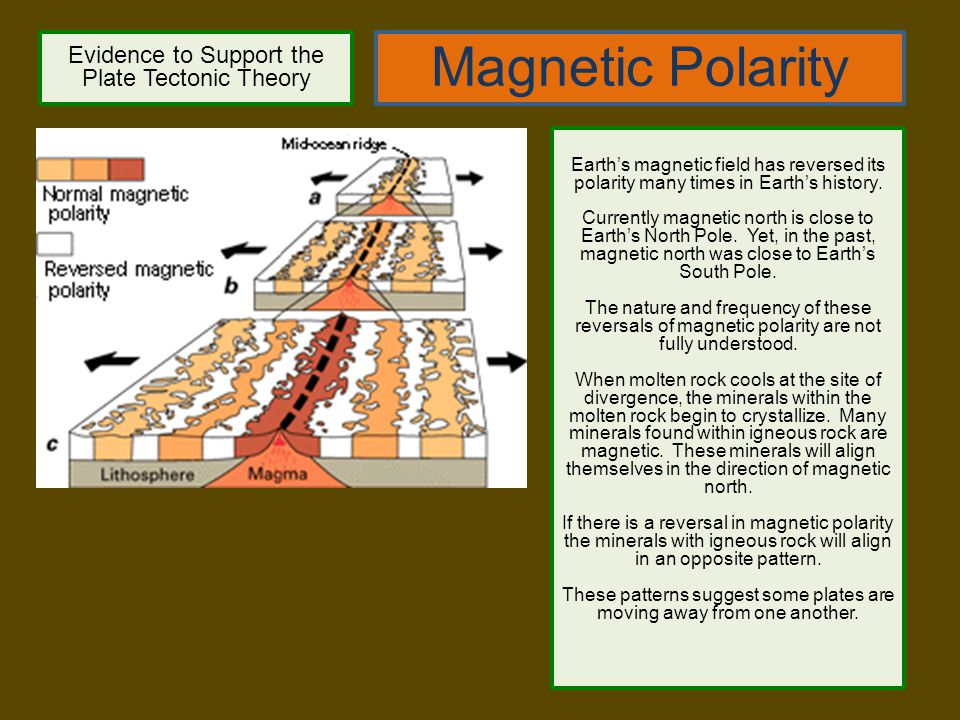 Magnetic Polarity Evidence to Support the Plate Tectonic Theory