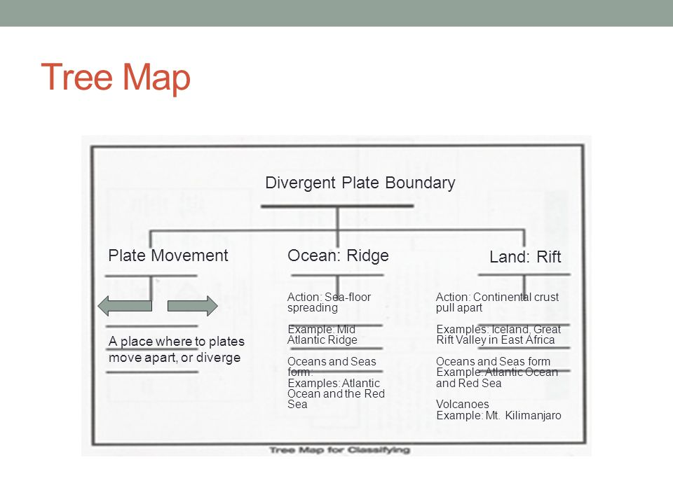 Tree Map Divergent Plate Boundary Plate Movement Ocean: Ridge
