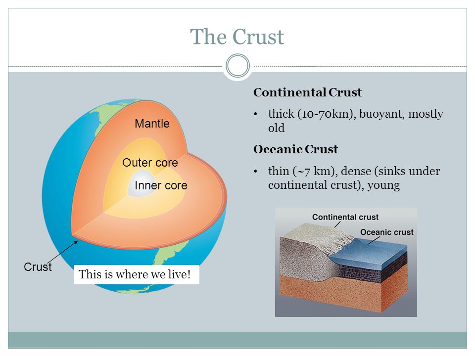 The Crust Continental Crust thick (10-70km), buoyant, mostly old