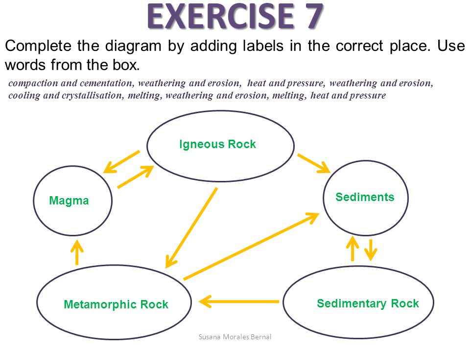 EXERCISE 7 Complete the diagram by adding labels in the correct place. Use words from the box.