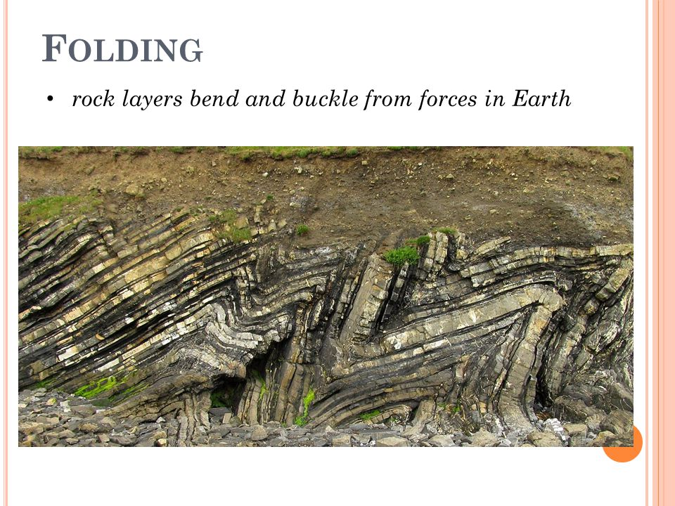 Folding rock layers bend and buckle from forces in Earth