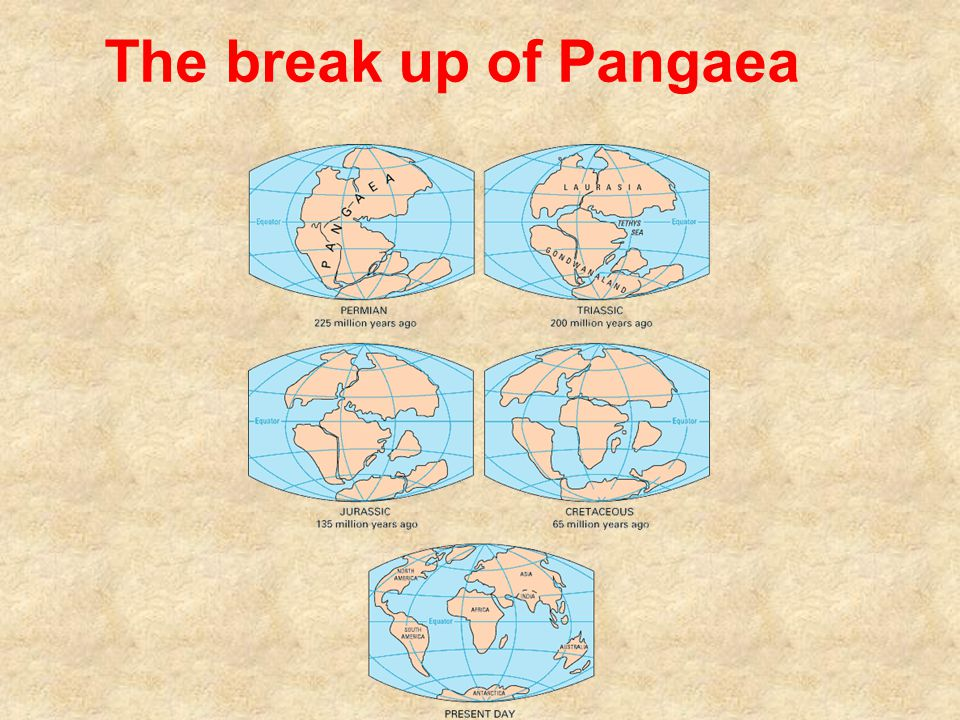 The break up of Pangaea