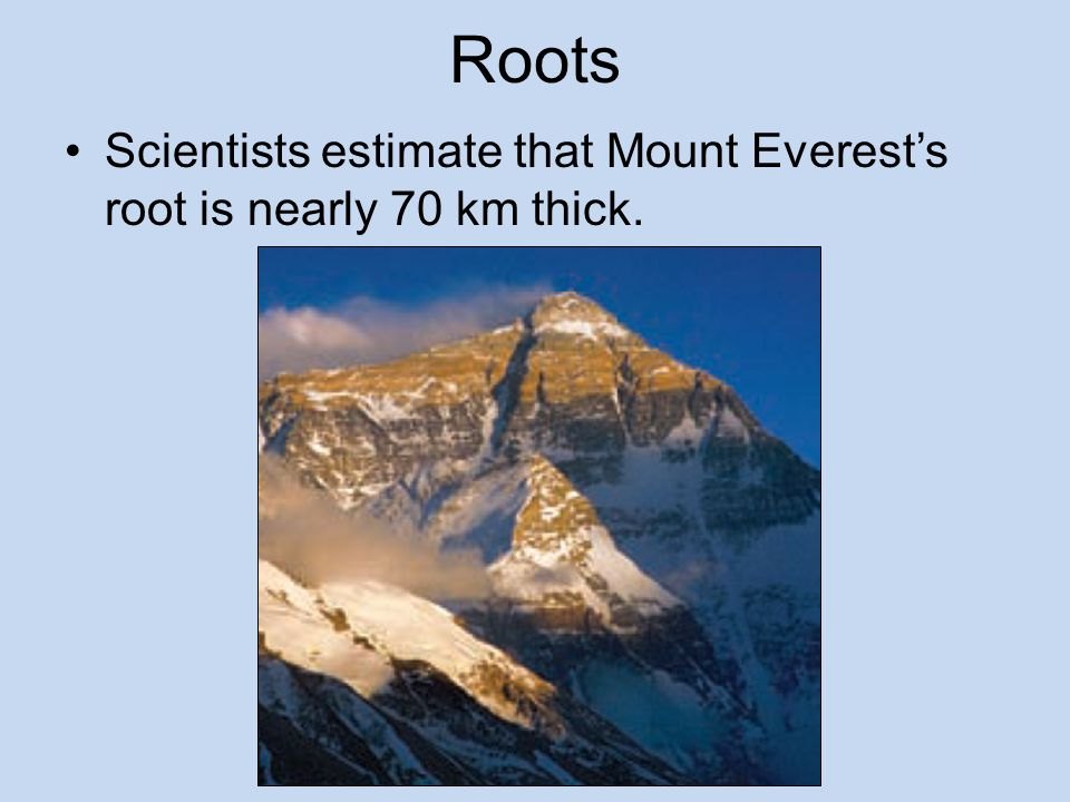 Roots Scientists estimate that Mount Everest's root is nearly 70 km thick.