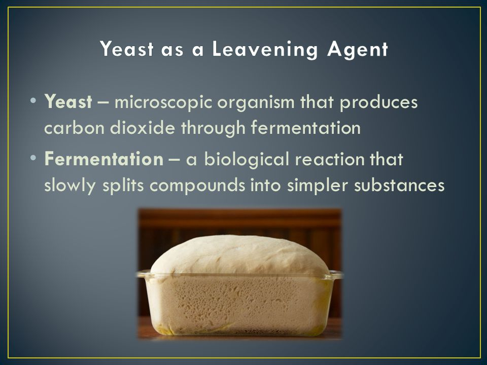 Yeast as a Leavening Agent