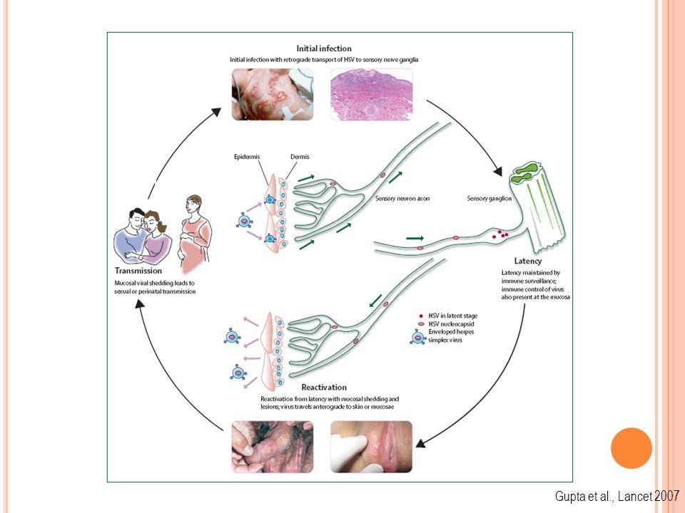 Asymptomatic Infection Gupta et al., Lancet 2007