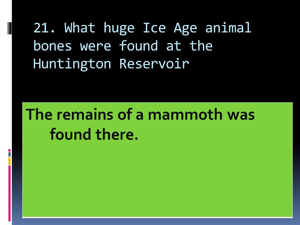 The remains of a mammoth was found there.