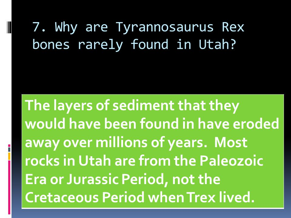 7. Why are Tyrannosaurus Rex bones rarely found in Utah