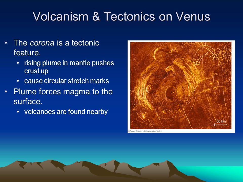 Volcanism & Tectonics on Venus