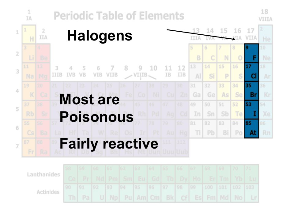 Halogens Most are Poisonous Fairly reactive