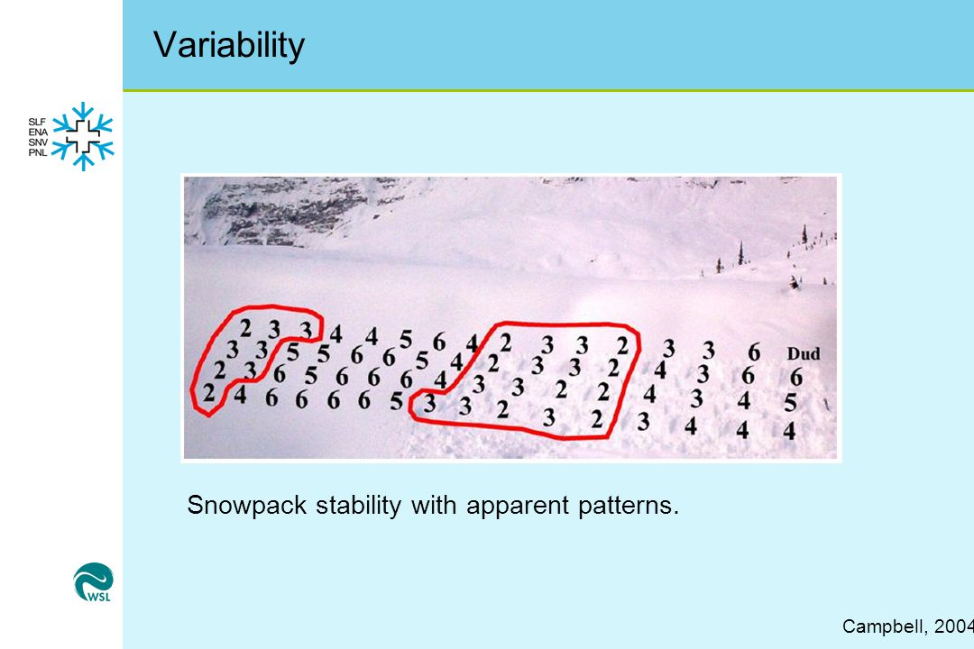 Variability Snowpack stability with apparent patterns. Campbell, 2004