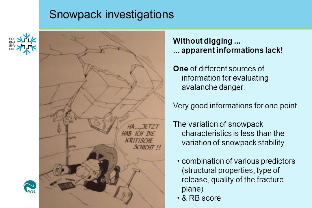 Snowpack investigations