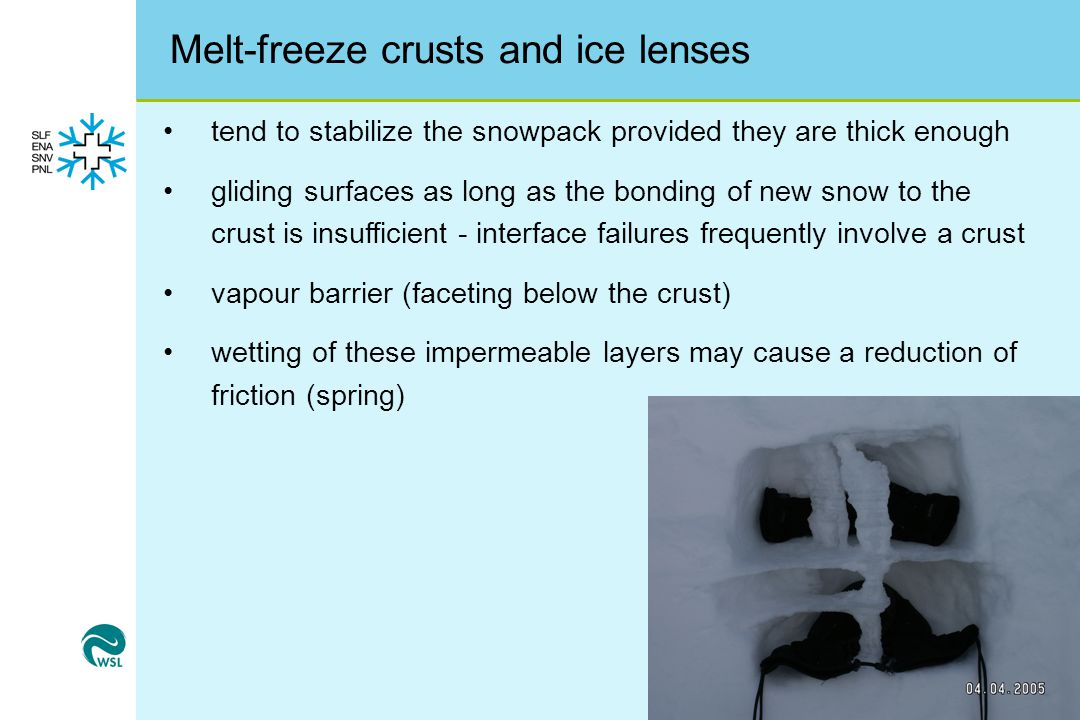 Melt-freeze crusts and ice lenses
