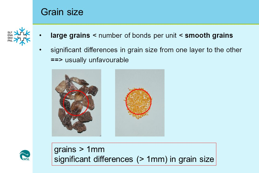 Grain size grains > 1mm