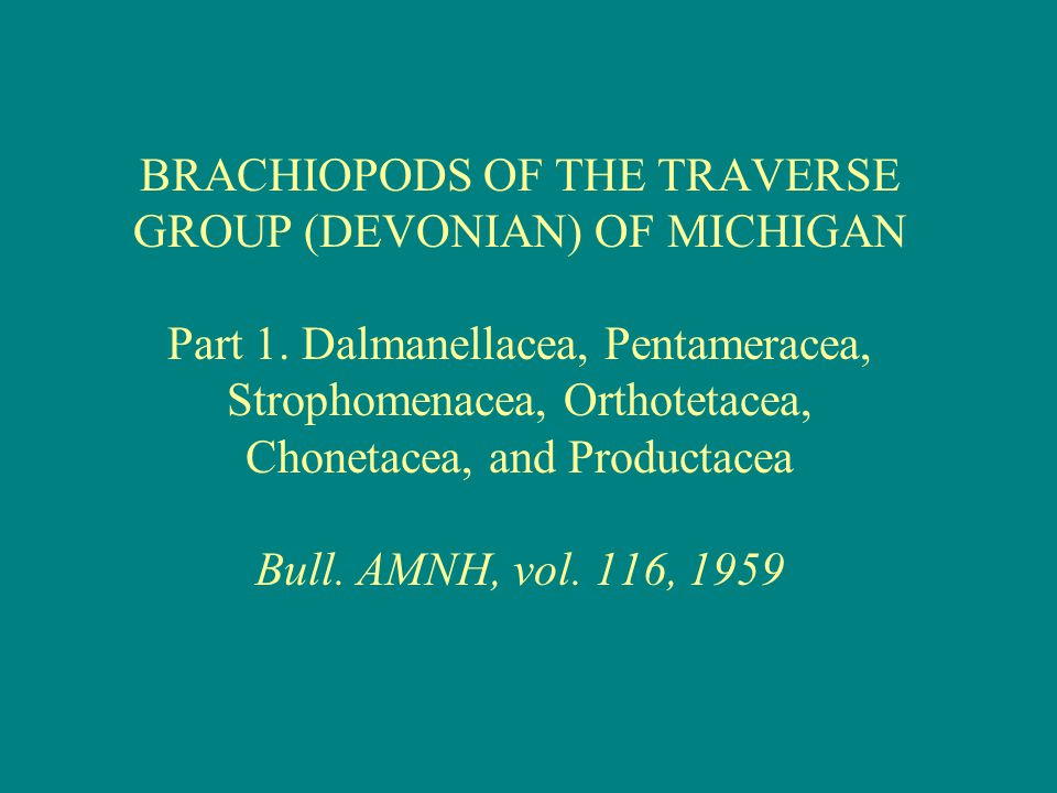 BRACHIOPODS OF THE TRAVERSE GROUP (DEVONIAN) OF MICHIGAN Part 1