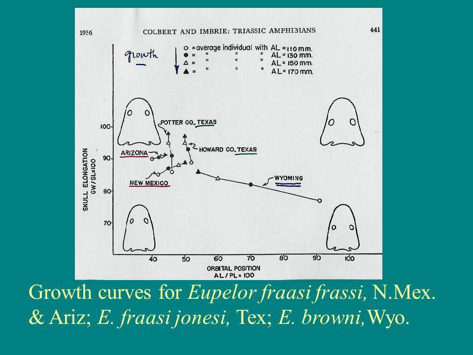Growth curves for Eupelor fraasi frassi, N. Mex. & Ariz; E