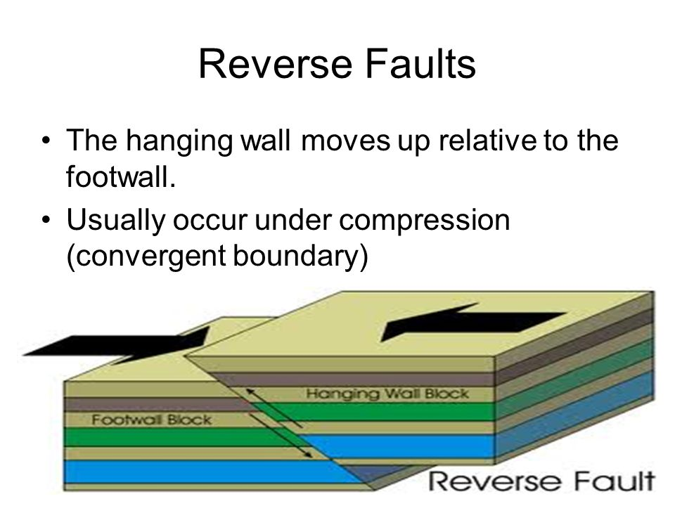 Reverse Faults The hanging wall moves up relative to the footwall.