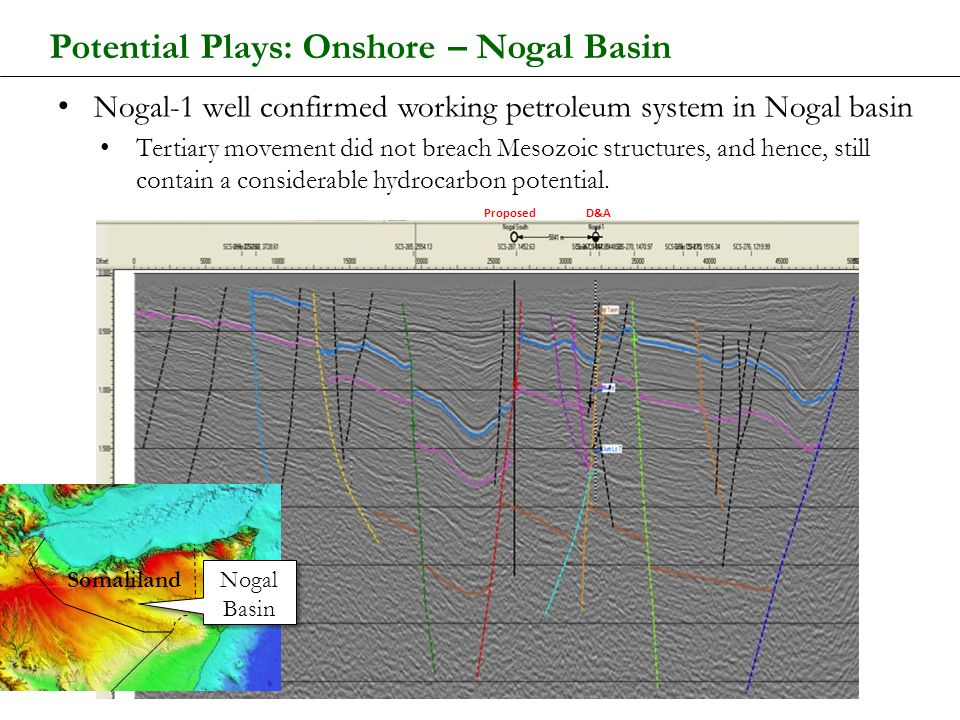 Potential Plays: Onshore – Nogal Basin
