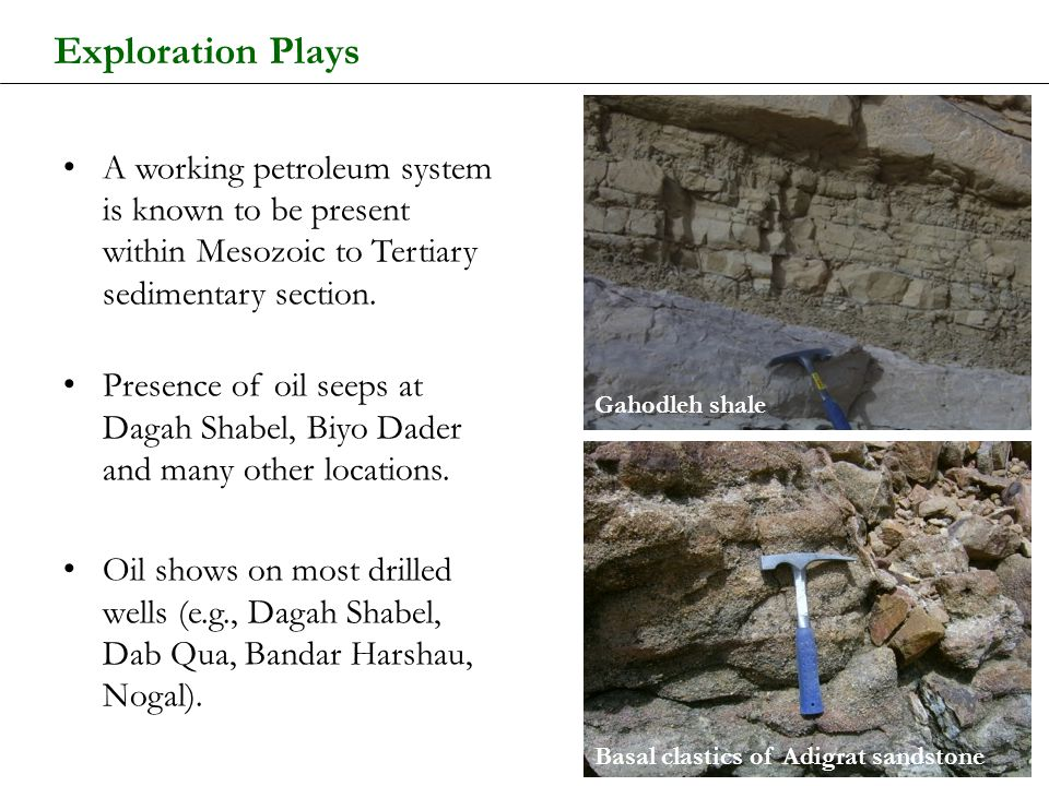 Exploration Plays A working petroleum system is known to be present within Mesozoic to Tertiary sedimentary section.
