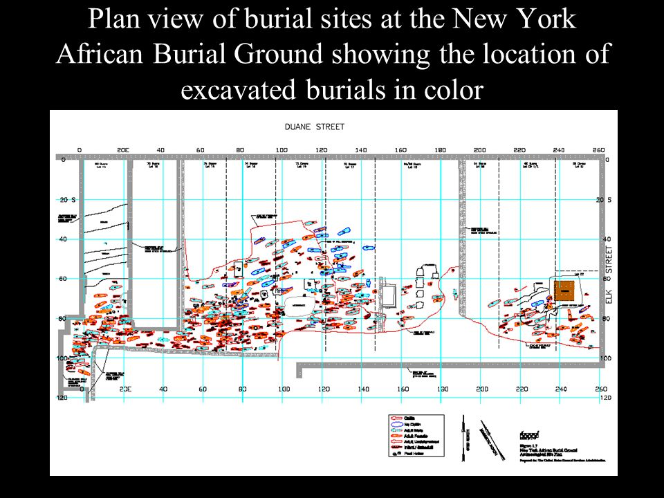 Plan view of burial sites at the New York African Burial Ground showing the location of excavated burials in color