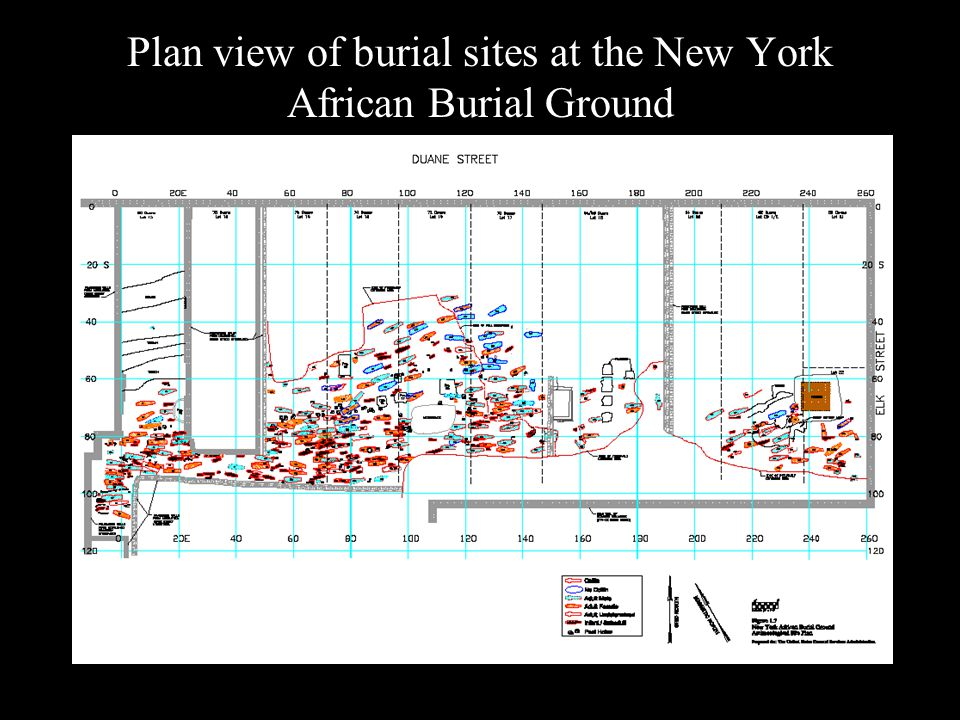 Plan view of burial sites at the New York African Burial Ground