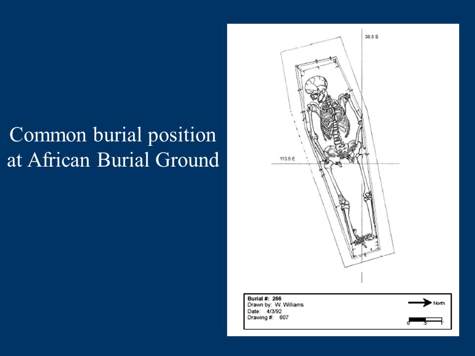 Common burial position at African Burial Ground