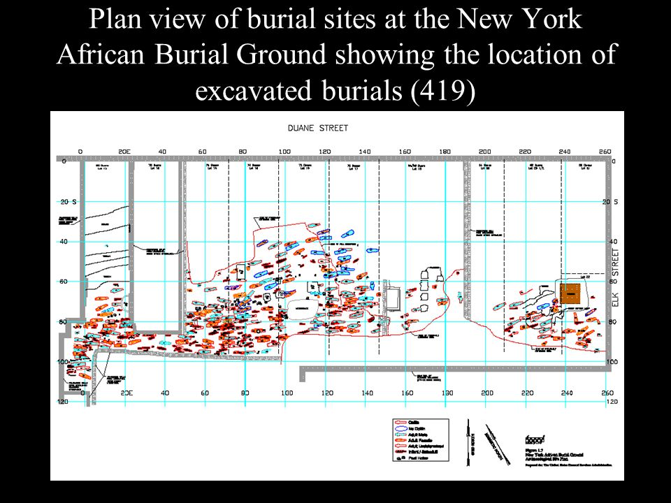 Plan view of burial sites at the New York African Burial Ground showing the location of excavated burials (419)