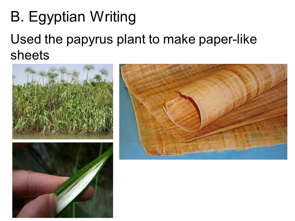 B. Egyptian Writing Used the papyrus plant to make paper-like sheets